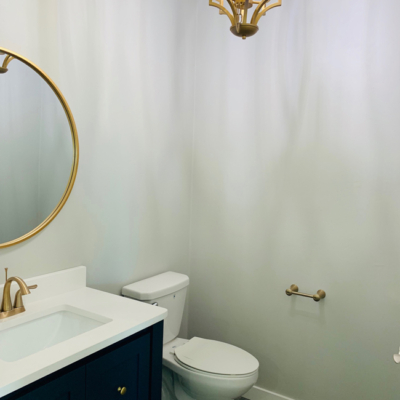 1768 Steiner Lane bathroom toilet